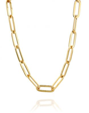 Gold By Padani Link Necklace