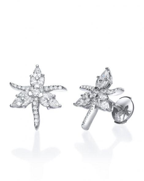 Malvene Star Earrings