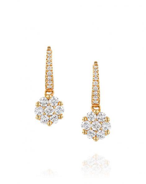 Zydo Earrings